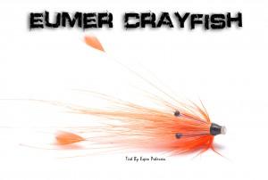 En krepslignende sak jeg har bundet på en Eumer Crayfish  system. Bundet av Espen Pedersen