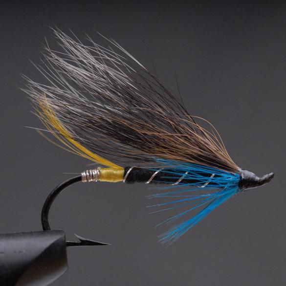 Blue-Charm-29,-_web